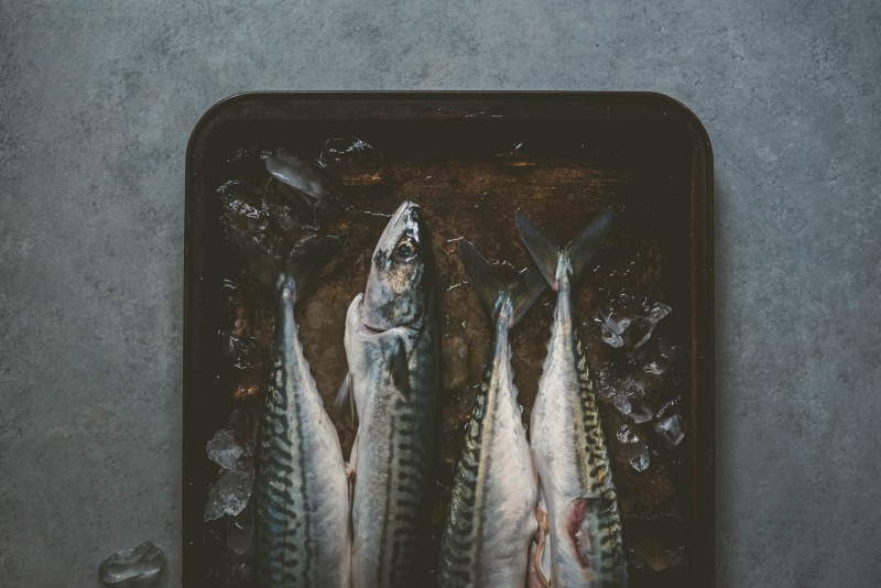 Food Styling and Photography Retreat – Crete, Greece 2017 www.thefoodiecorner.gr Photo description: Photo description: A dark and moody photo with a half view of some fish lying on a tray, ice cubes around them.