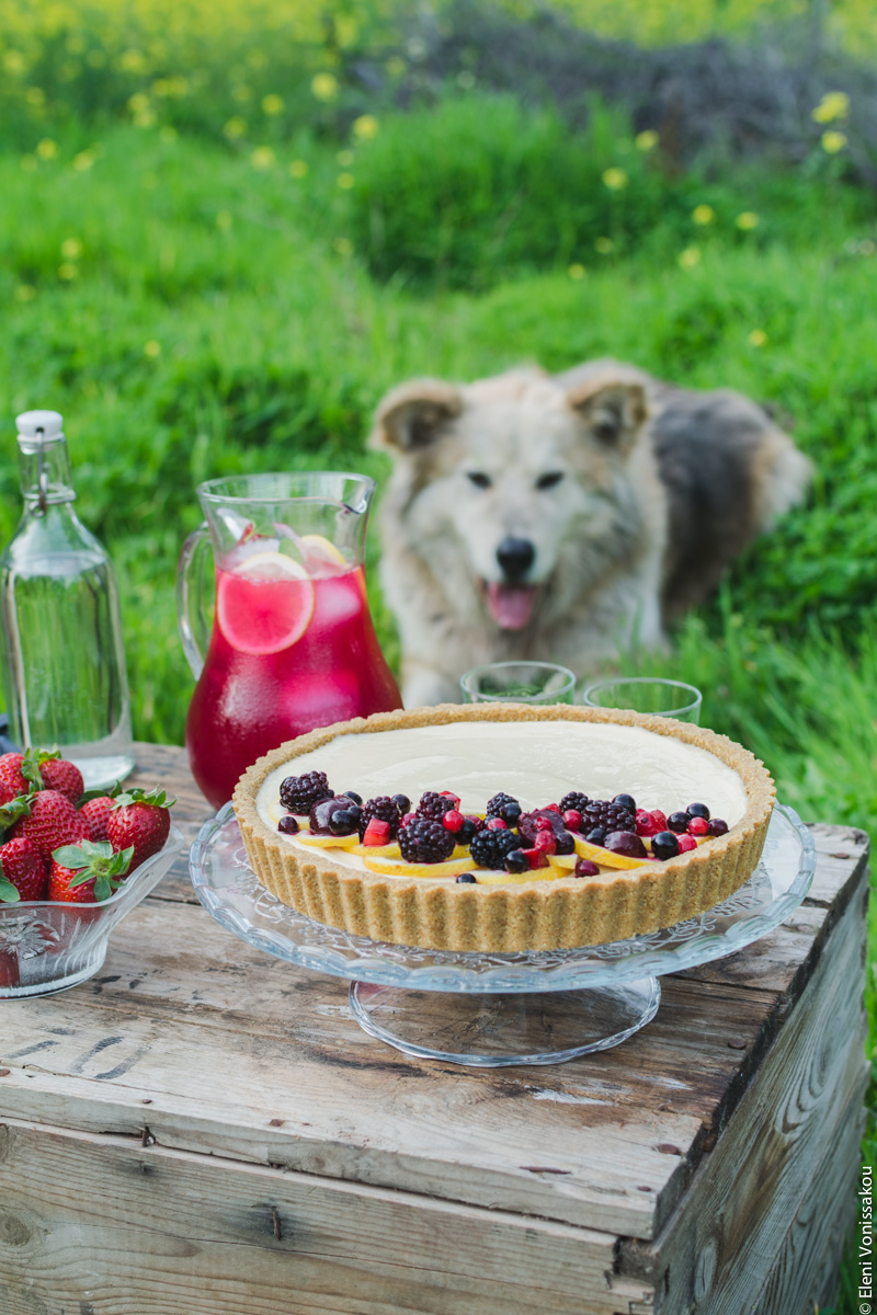 Lemon Curd and Mascarpone Cheesecake with Berries www.thefoodiecorner.gr Photo description: A ¾ view of the cheesecake on the box. In the background on the grass lies a large fluffy dog (named Ouzo), who looks a little like a husky, German shepherd or Akita cross. His ears are forward and slightly floppy and his tongue is protruding as he looks at the food.